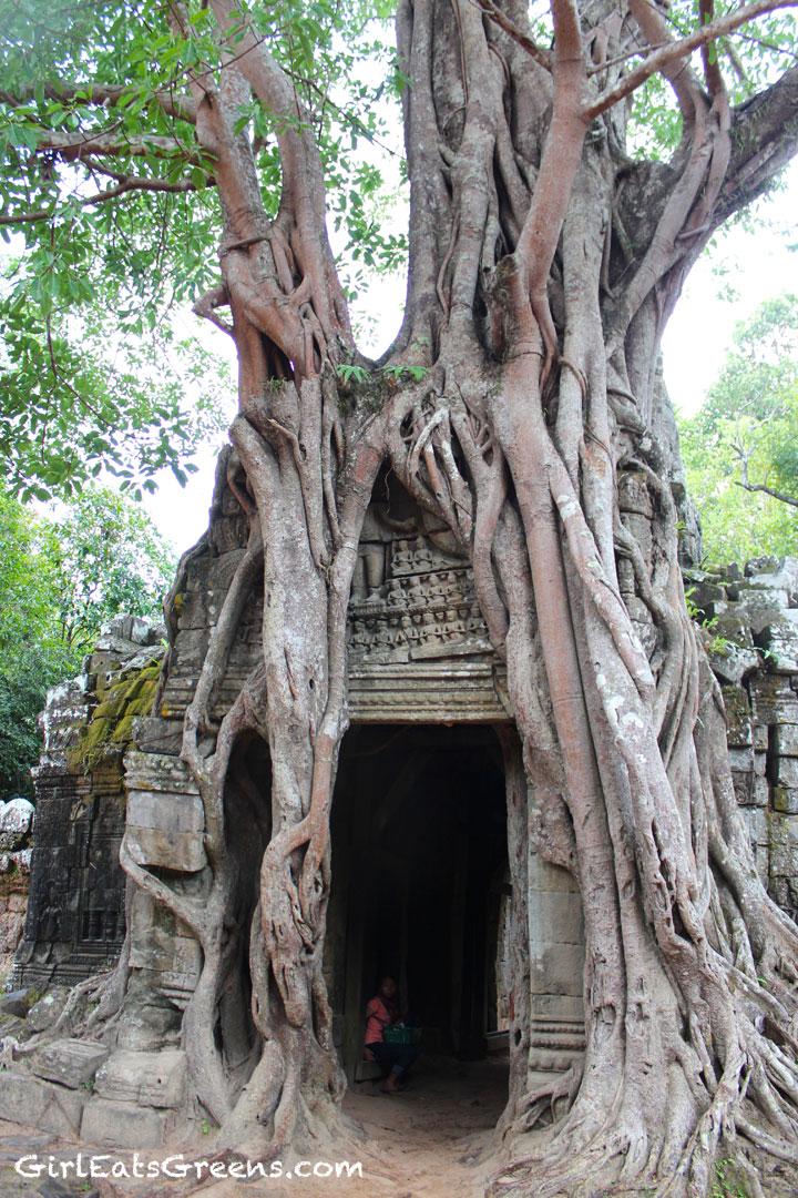 Cambodia-Temples-7