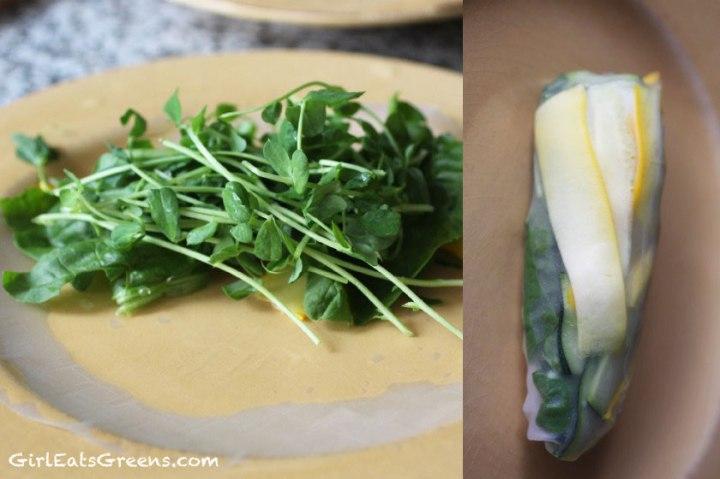 vegan-spring-rolls-