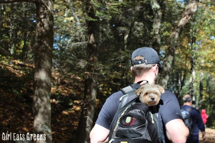 New Paltz New York NY Minnewaska State Park Hiking Girl Eats Greens_0018