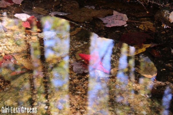 New Paltz New York NY Minnewaska State Park Hiking Girl Eats Greens_0022