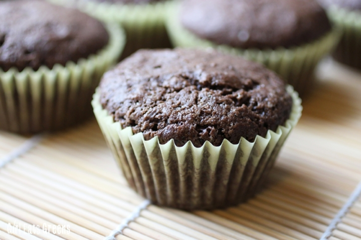 Mexican Chocolate Cupcakes Gluten Free Vegan Girl Eats Greens_0024